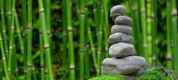 Praxis-des-Zen